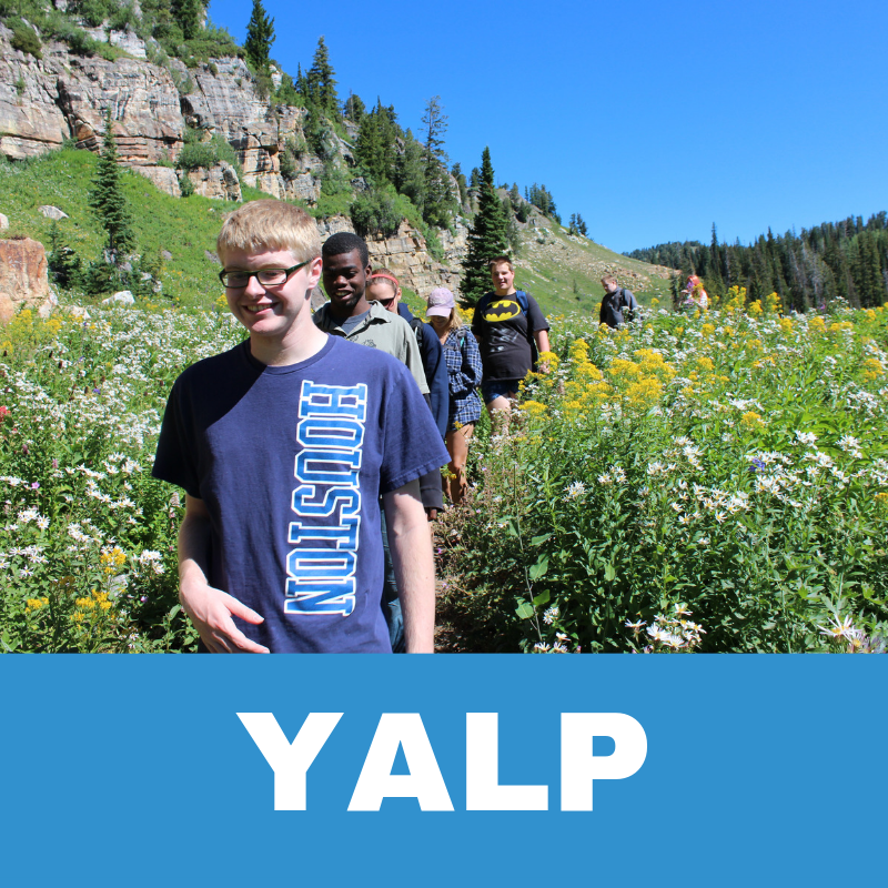 YALP Program Button