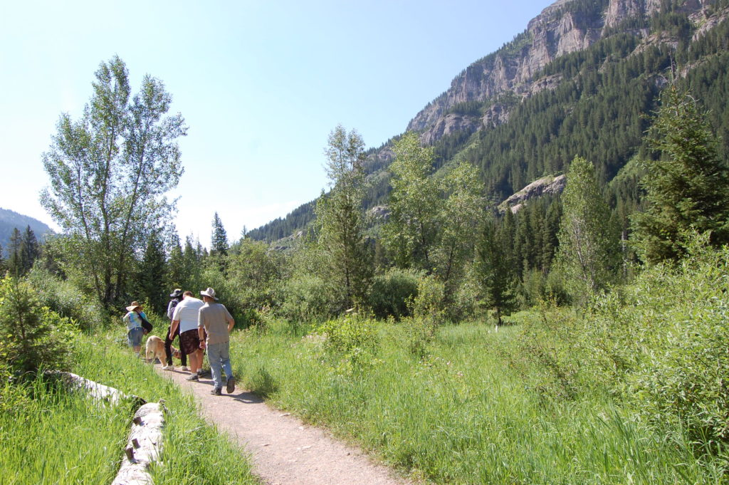 Hiking Targhee National Forest